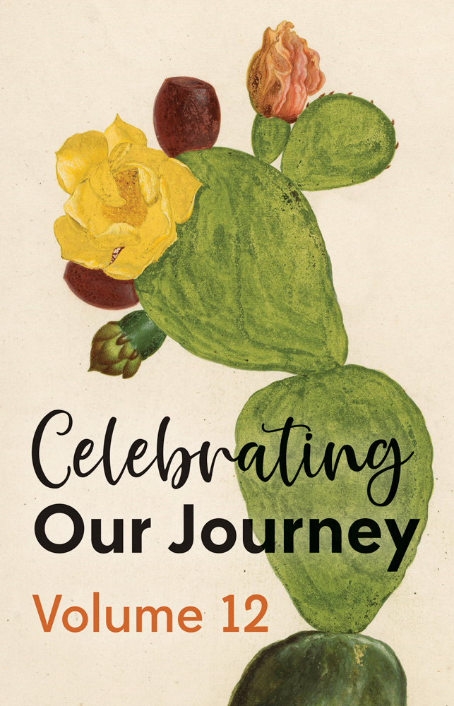 celebrating our journey-vol.10